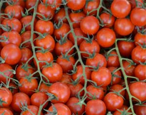 saus_tomaten